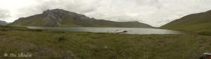 Kurupa Lake Beaver
